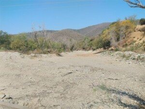 The lack of rain has caused a very severe drought in the region
